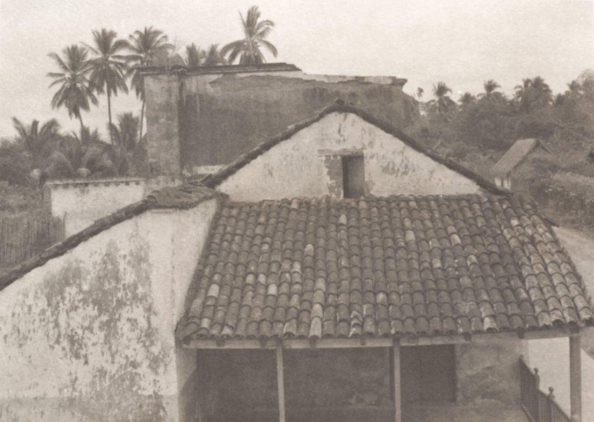 image of 'Paisaje, San Blas, Nayarit'