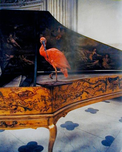 Ibis, Egyptienne, sur pianoforte, Chartres Museum, France