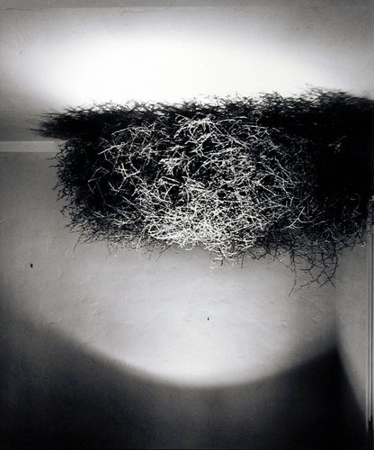 Untitled (Ceiling with Tumbleweed), from the Wall Site series