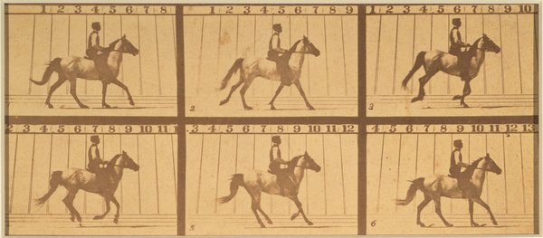 Image for artwork Mahomet, from the series The Horse in Motion