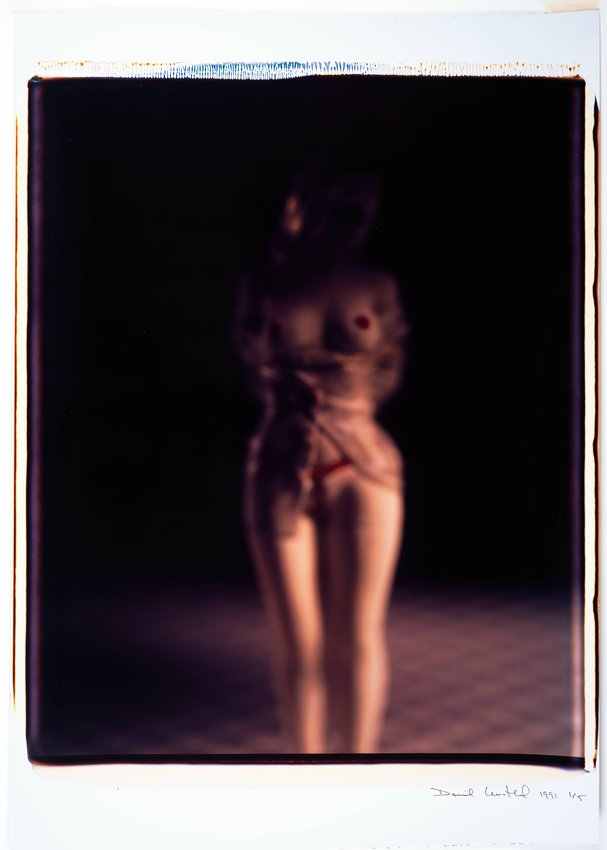 image of 'Untitled, from the series Desire'