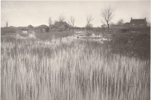A Rushy Shore, from Life and Landscape on the Norfolk Broads