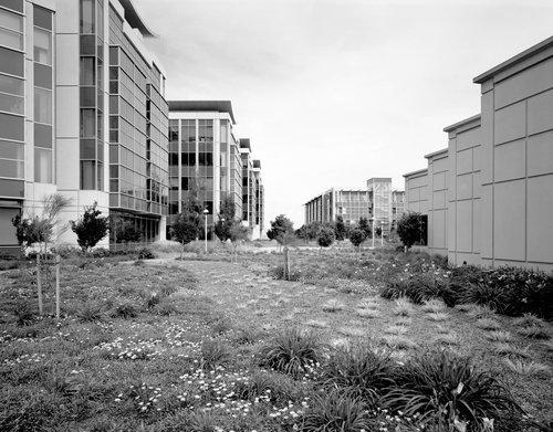 Redwood City, 2007