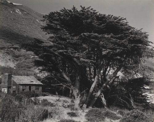 Deserted House, Little Sur