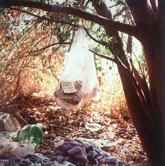 Image for artwork Landscapes for the Homeless #1