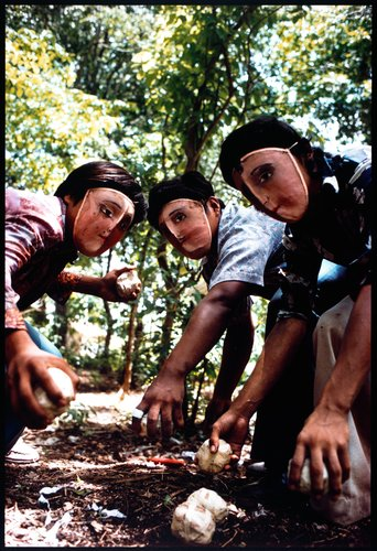 Youths practice throwing contact bombs in forest surrounding Monimbo, from the series Nicaragua