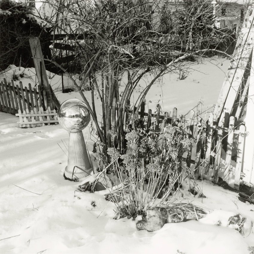 image of 'Home Garden, NE Corner, January'