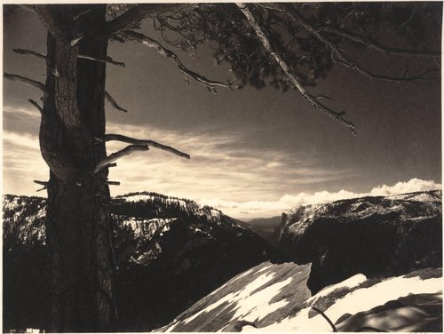 On the Heights, Yosemite Valley, from the portfolio Parmelian Prints of the High Sierras