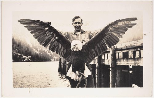 Untitled [Man holding eagle with spread wings]