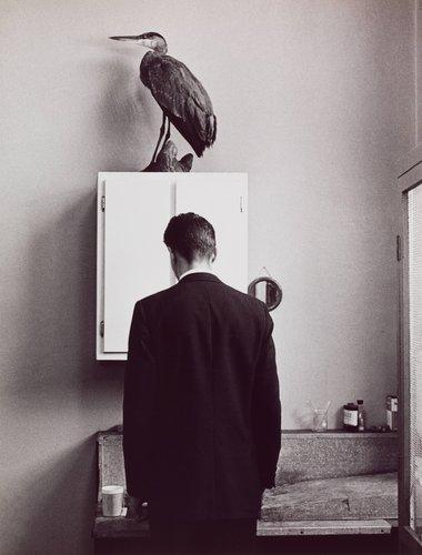 The Heron, New York