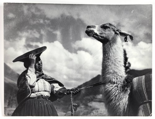 Indian woman with llama