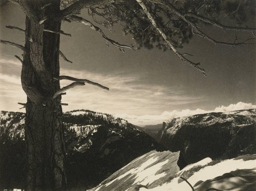 On the Heights, from the portfolio Parmelian Prints of the High Sierras