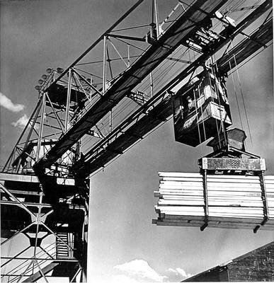 image of 'Untitled (Hammerhead Crane), from the Red River series'