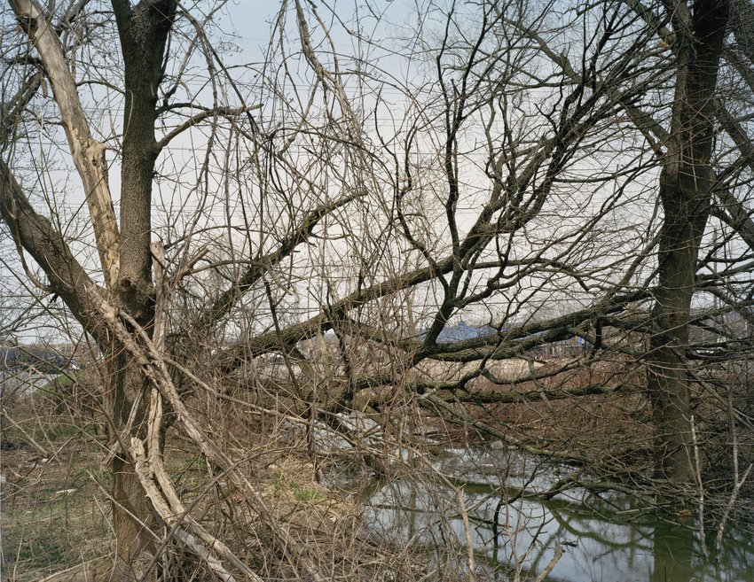 image of 'Ithaca, New York, from the series Other Nature'