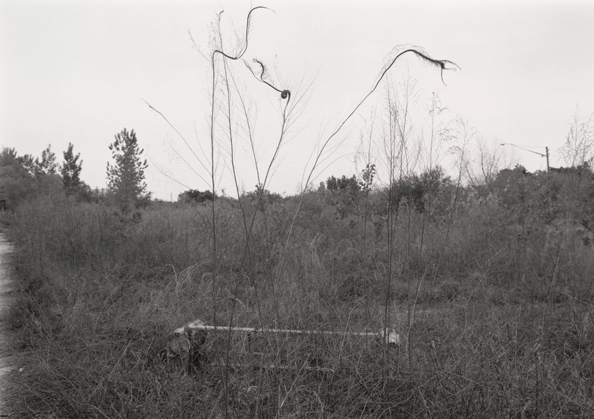 image of 'Athens, Georgia, from the series South East'