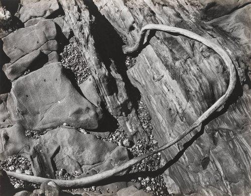 Rocks, Point Lobos