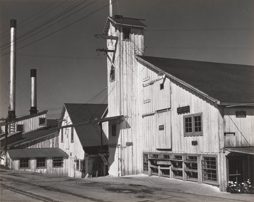 Booth Cannery