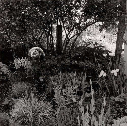 Home Garden, NE Corner, June