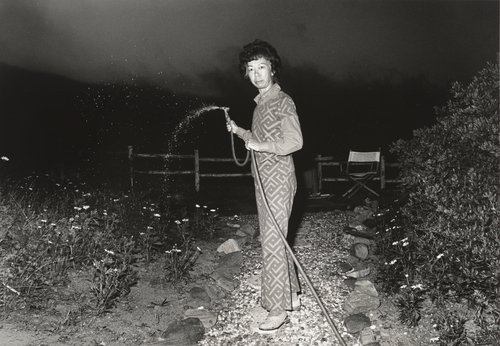 Aunt Lucy, from the series The Jangs