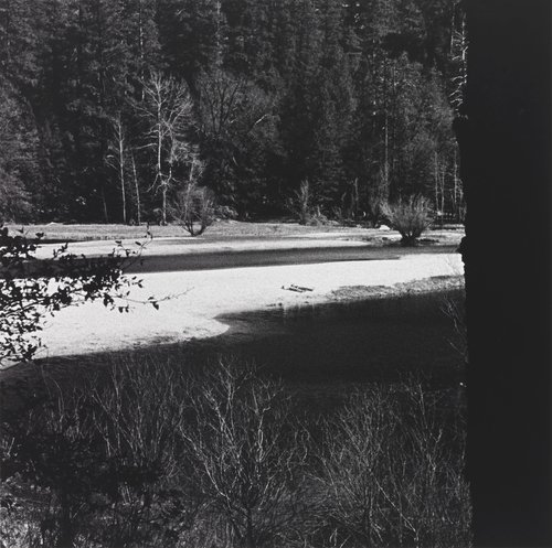 Occupied Landscape #4 (Yosemite), from the Four Landscapes Portfolio