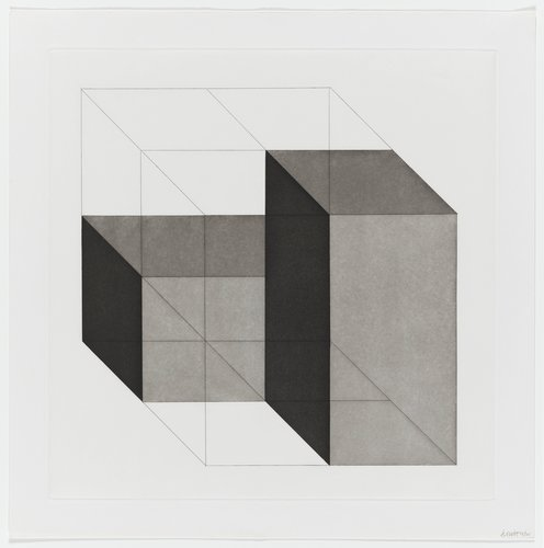 Forms Derived from a Cube, Plate #24