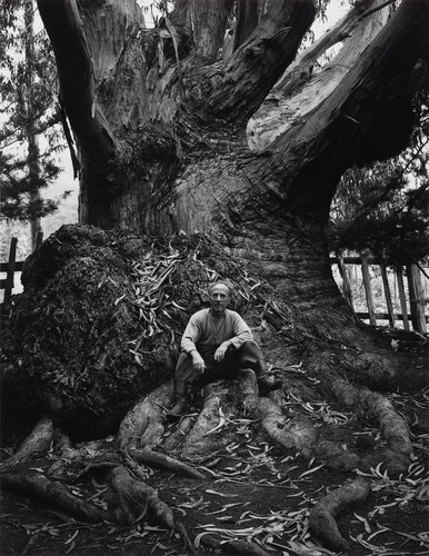 Edward Weston, Carmel Highlands, California