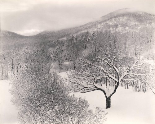 Untitled (Winter Landscape, Lake George, New York)