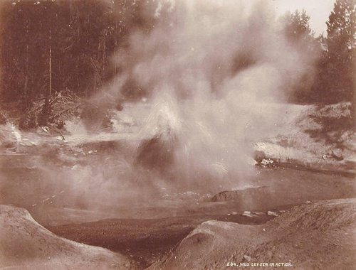 Mud Geyser in Action