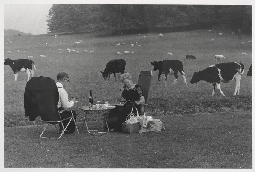 image of 'Glyndebourne'