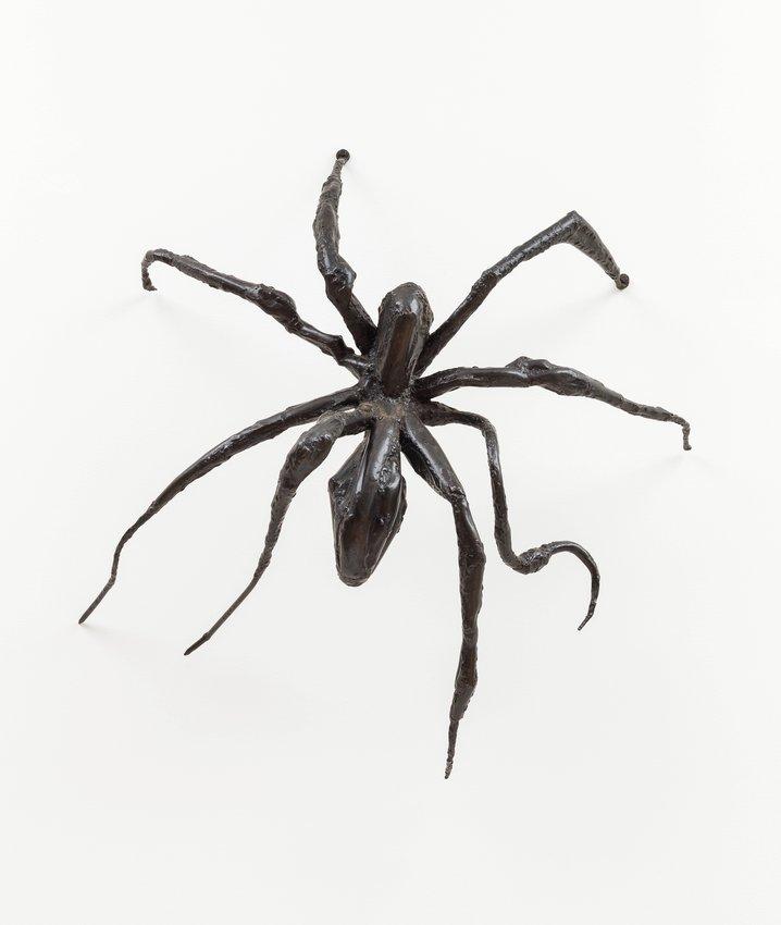 image of Spider I