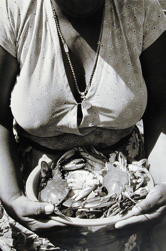 image of 'Frutos del mar (Fruits of the Sea)'