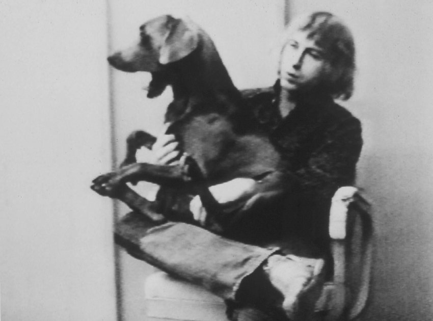 image of The Best of William Wegman (1970 - 1978)