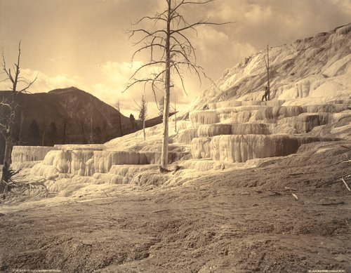Pulpit Terrace, Mammoth Hot Springs