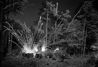 image of explosion in woods