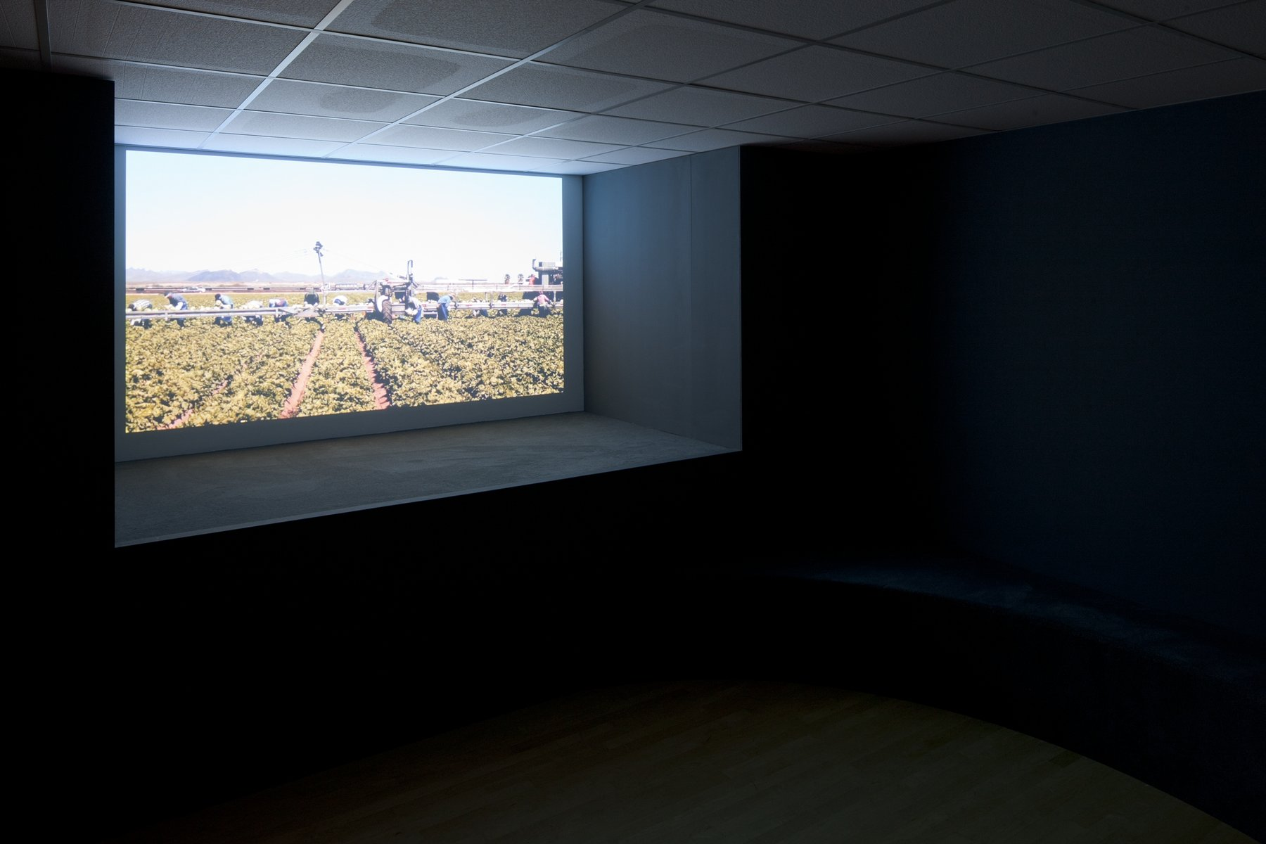 A projection of a field with works in it