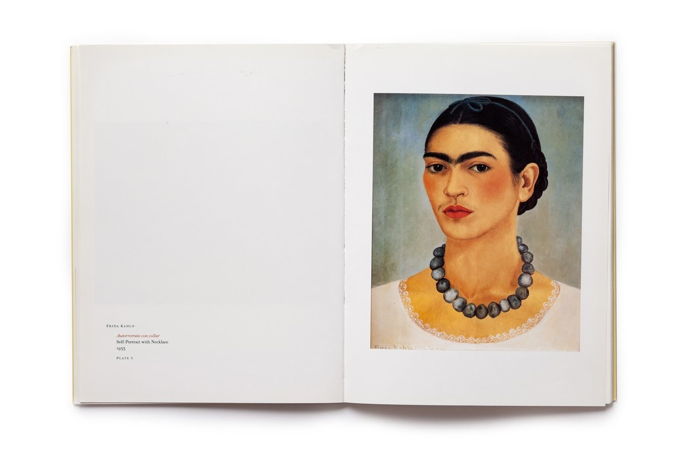 Frida Kahlo, Diego Rivera and Mexican Modernism, plate 5
