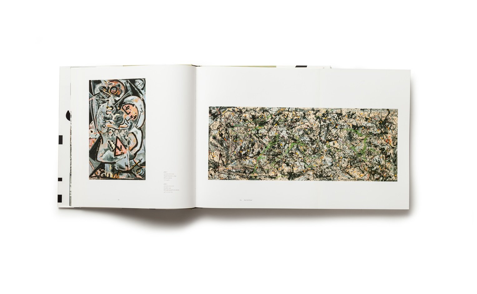 Celebrating Modern Art: The Anderson Collection publication plates 2-3