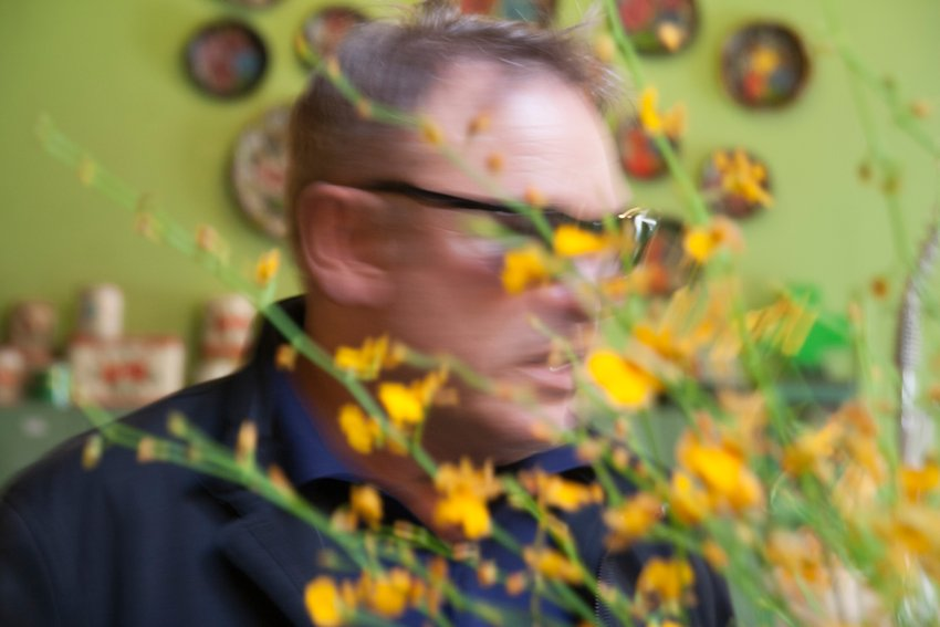 A blurry image of yellow flowers with a man's face visible through the branches, Gatti