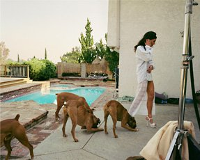 woman with four dogs by pool