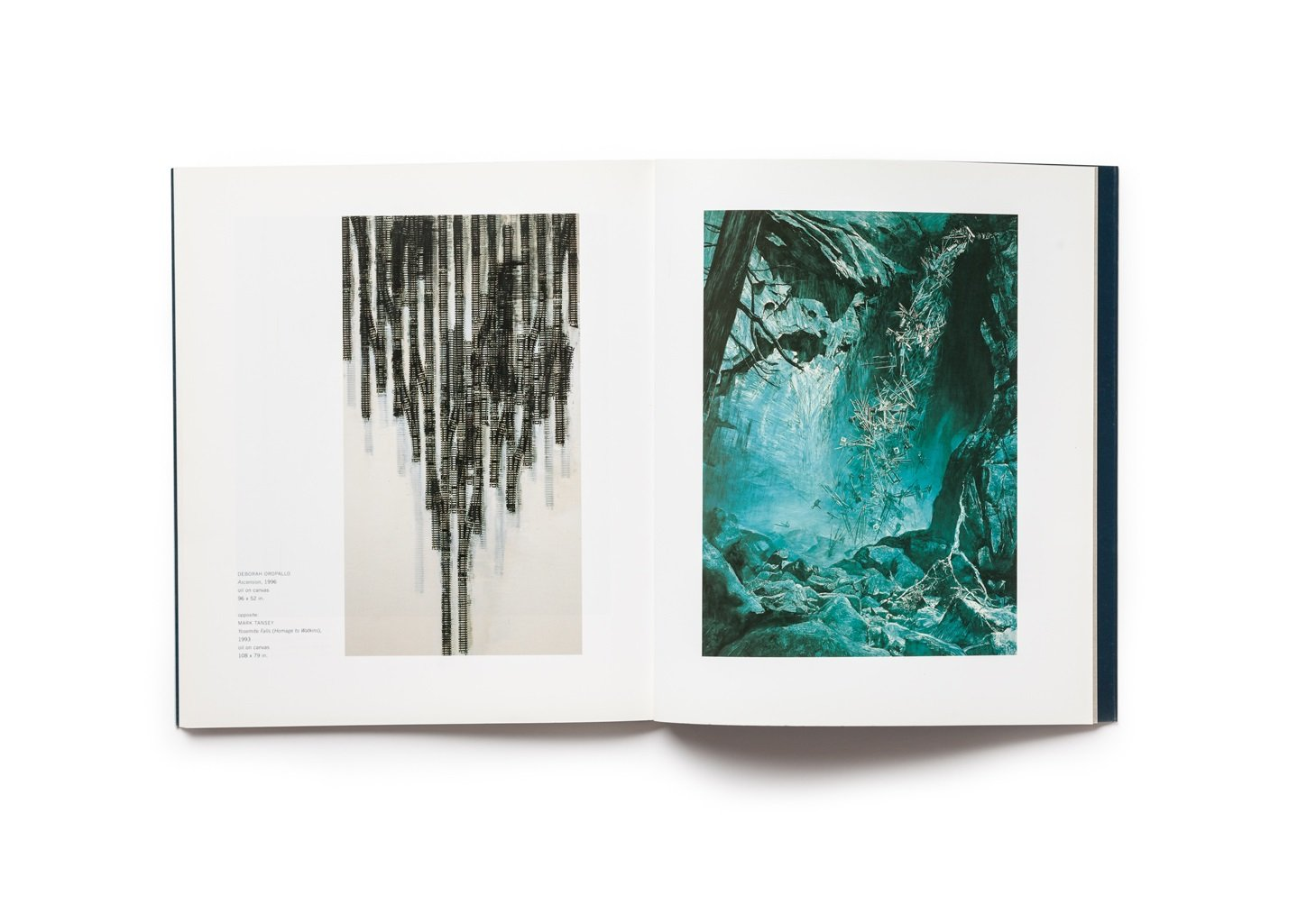 Celebrating Modern Art: Highlights of the Anderson Collection publication pages 78-79