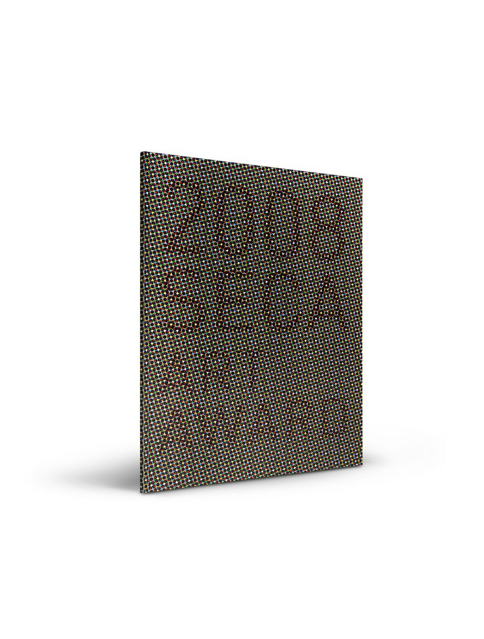2008 SECA Art Award publication cover