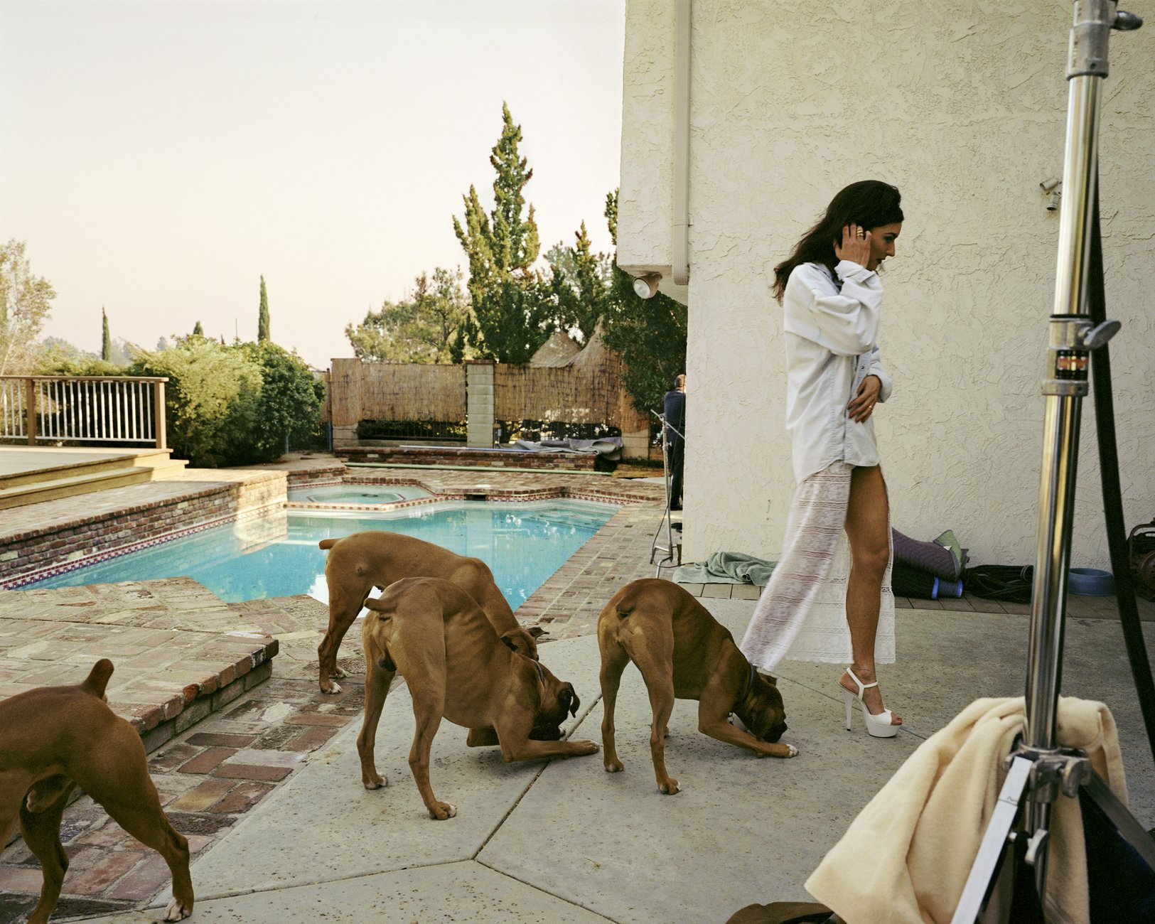 Artwork image, Larry Sultan, Boxers, Mission Hills