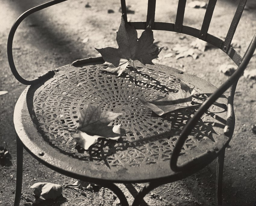 Artwork image, Ilse Bing Chair and Dead Leaves, Luxembourg Gardens, Paris