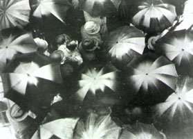 ivens black and white film still umbrellas from above