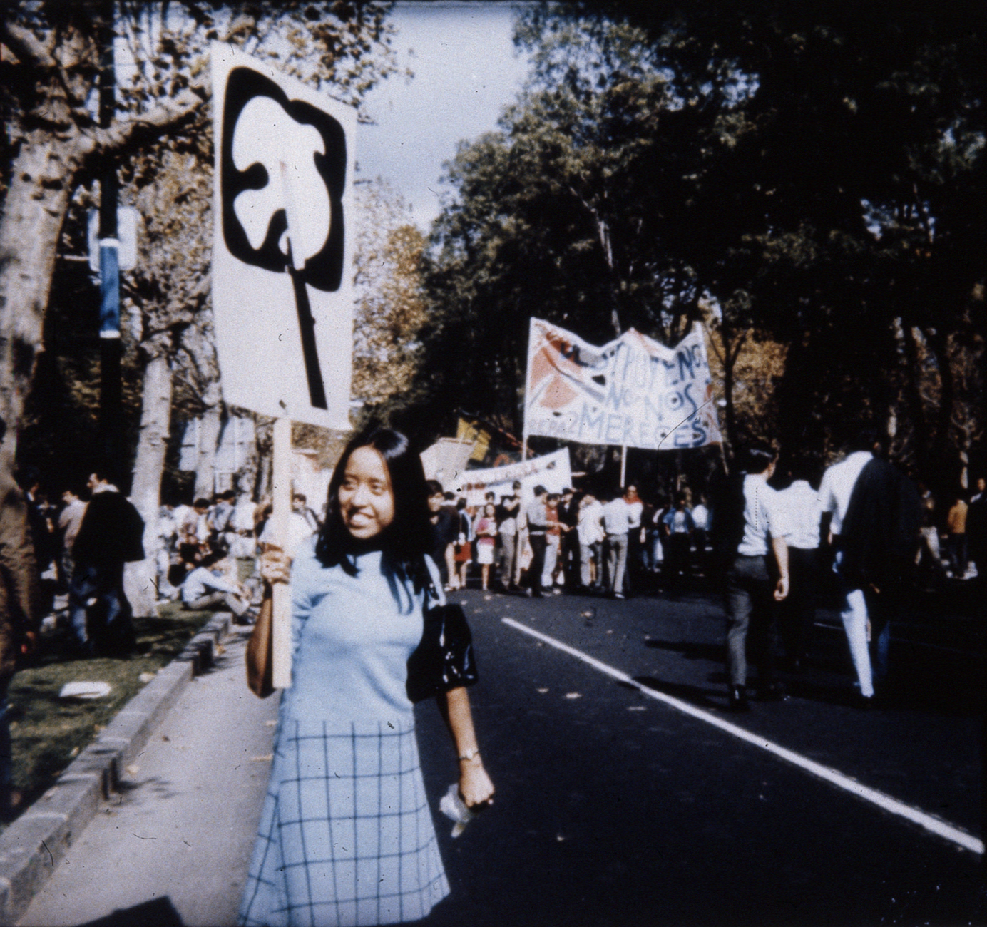 a person in sky blue attire holding a sign with symbol of dove