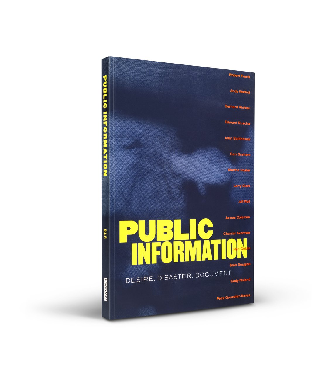 Public Information: Desire, Disaster, Document cover