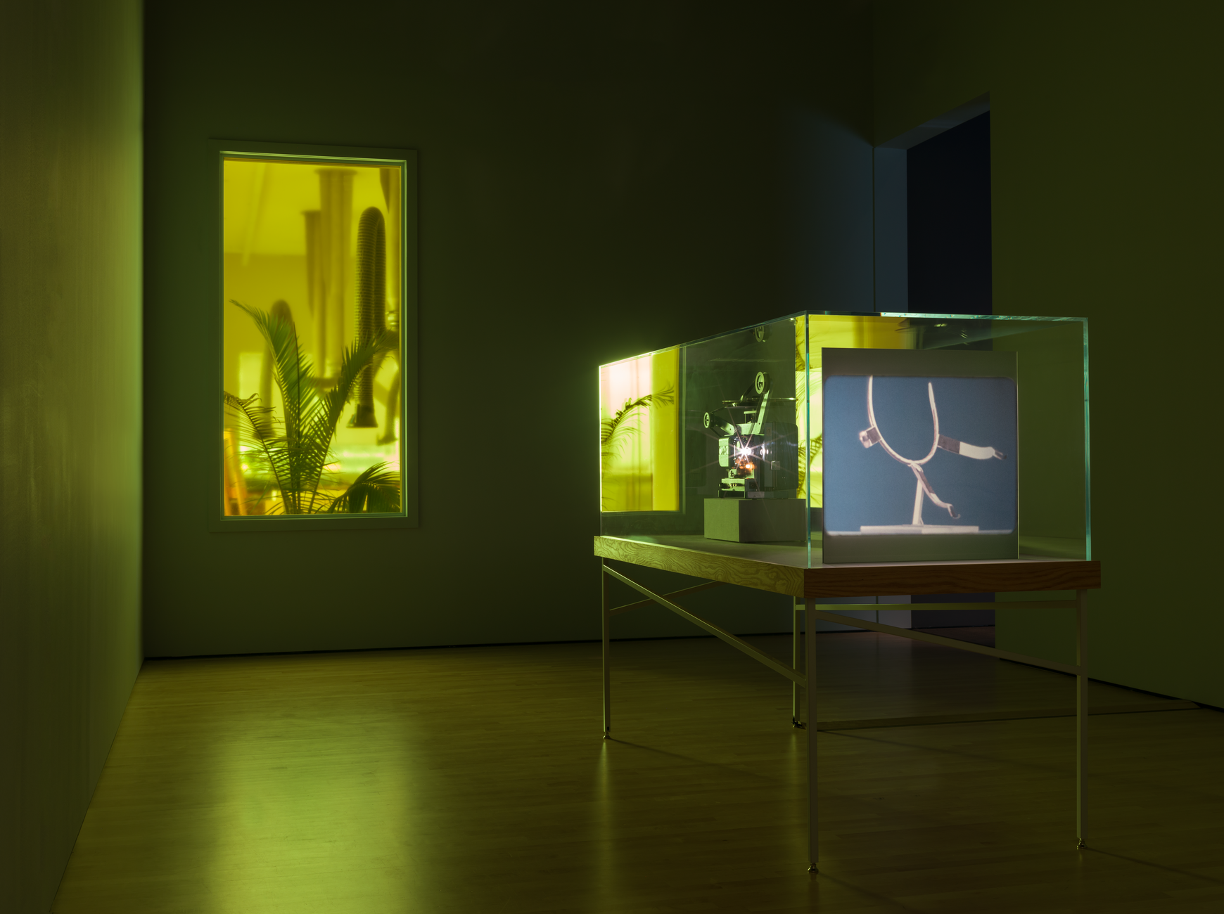 SFMOMA install image, Runa Islam, Cabinet of Prototypes