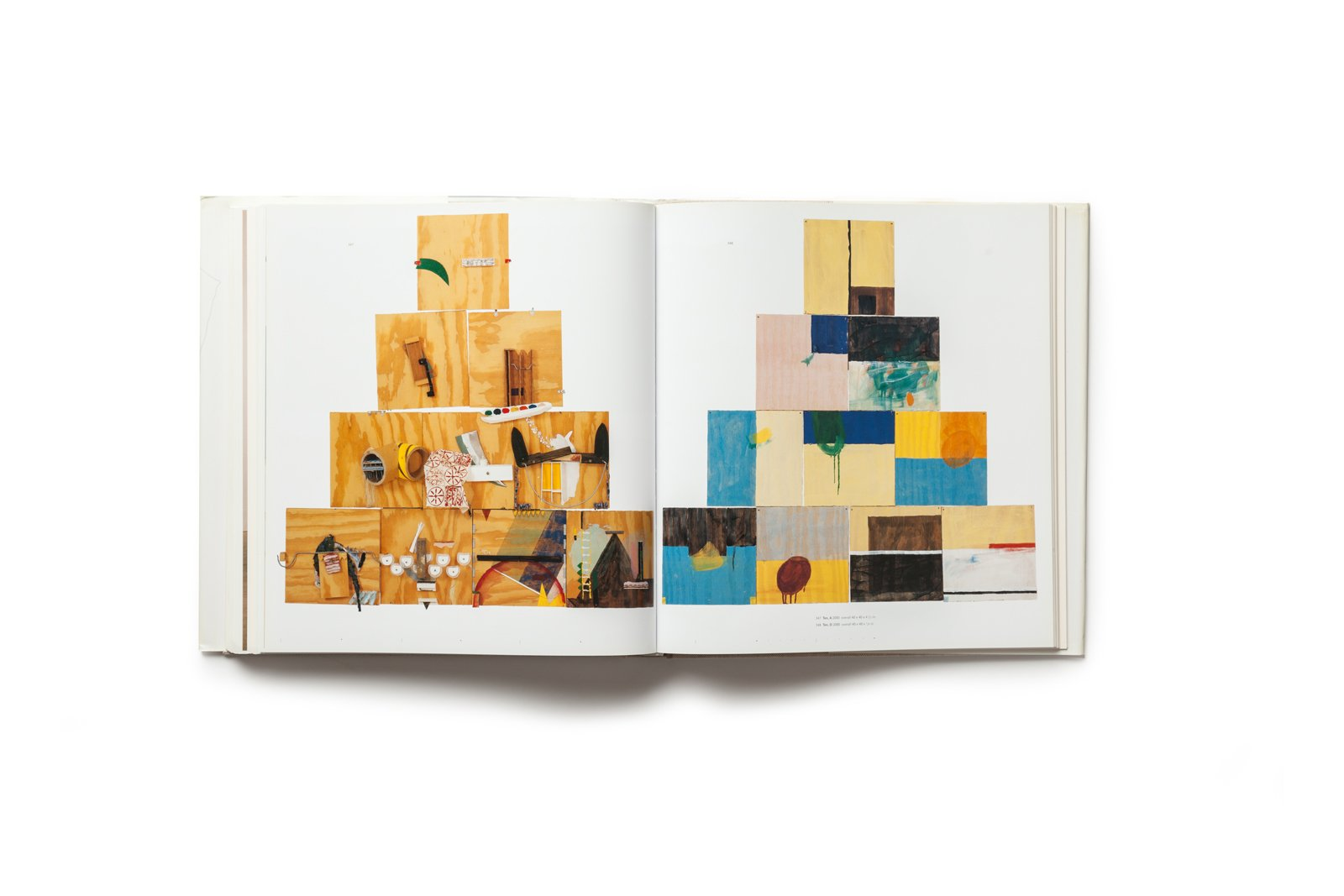 The Art of Richard Tuttle publication plates 347-348