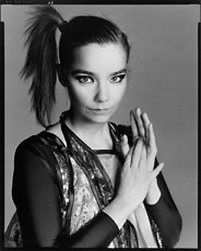 Richard Avedon, Bjork portrait