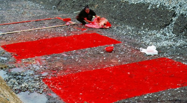 WEnda Gu laying out bright red rectangles of pigment on gravel